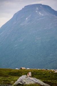 Vandrebilde fra Innerdalen